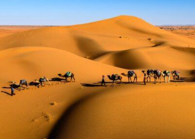 Deserti-belli
